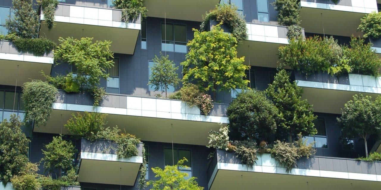 """<span class=""""entry-title-primary"""">BONUS VERDE 2018: COS'È E COME FUNZIONA</span> <span class=""""entry-subtitle"""">La nuova detrazione del 36% che spetta a chi effettua spese di sistemazione di giardini, terrazzi e balconi, anche condominiali</span>"""