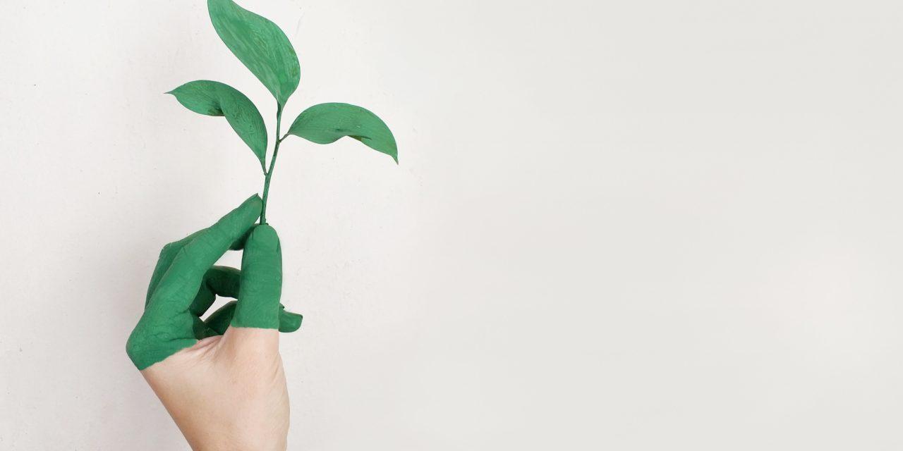"""<span class=""""entry-title-primary"""">CERTIFICAZIONE DI SOSTENIBILITÀ</span> <span class=""""entry-subtitle"""">Le certificazioni di sostenibilità, oltre che all'efficienza energetica, sono rivolte anche all'impatto sull'ambiente che ci circonda</span>"""